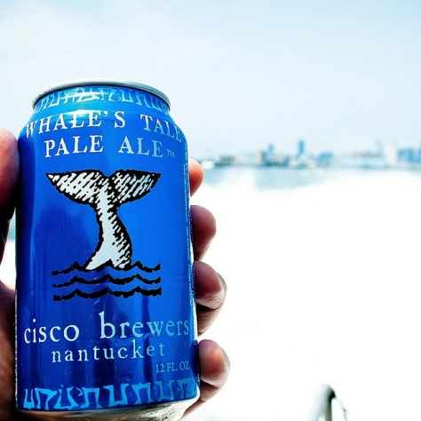Обзор пива. Cisco Whale's Tale Pale Ale.