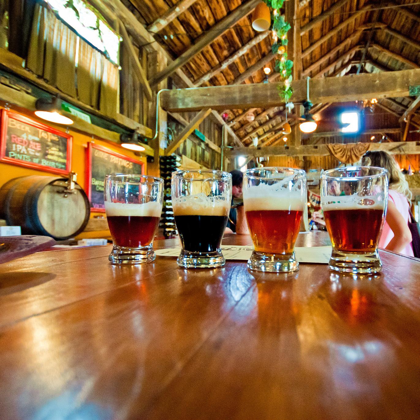 Дегустация пива. Крафтовая пивоварня.