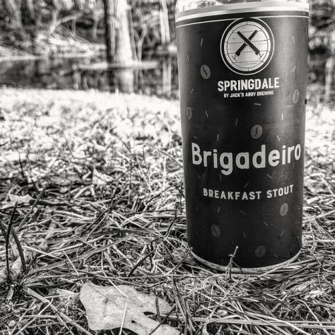 Обзор пива. Springdale Brigadeiro.